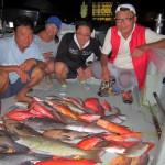 Fish (4)