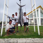 Marlin 55kg